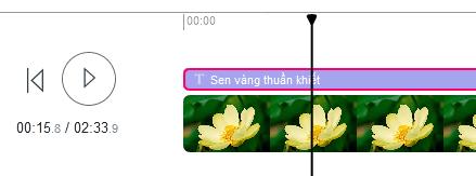 cach-chen-chu-vao-video-online